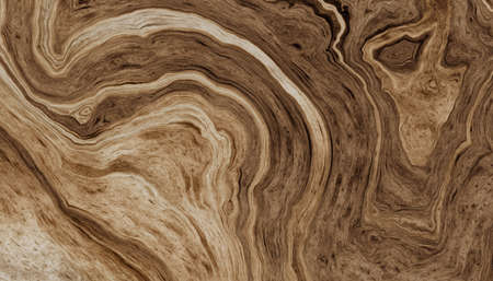 Texture of roots of tree with wavy lines and age rings. Abstract background. 2D illustration Stock Photo