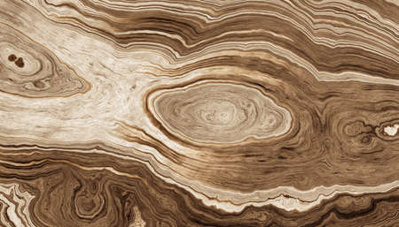 Texture of roots of tree with wavy lines and age rings. Abstract background.2d illustration