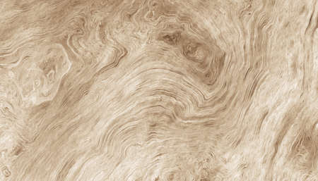 Texture of the wood rings. Abstract background. 2d illustration. Stock fotó