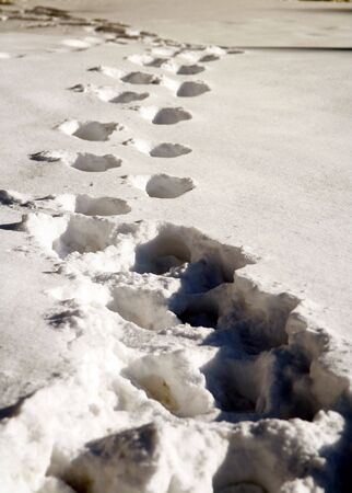 Footsteps in deep snow 스톡 콘텐츠