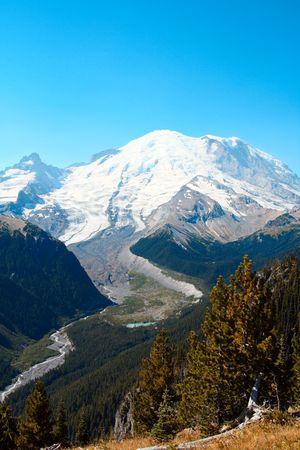tundra: Mount Rainier during summer time Stock Photo