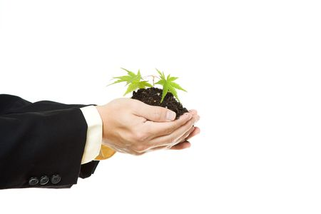 An isolated shot of a businessman holding a new plant photo