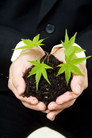 A conceptual shot of a businessman holding a new plant photo