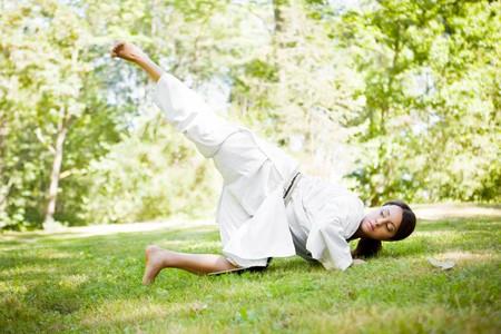 가라테 연습을하는 아시아 여자의 총 스톡 콘텐츠 - 8004396