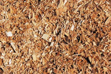 combustion: Wooden chips for combustion in a biomass boiler Stock Photo