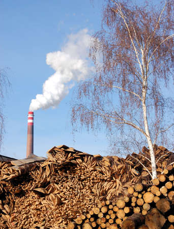 Pile of wood for combustion in a biomass boiler Stock Photo