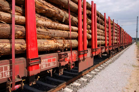 wood railroads: Line of biomass train wagons on a railroad