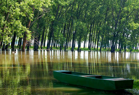 alluvial: A boat on a river in an alluvial forest Stock Photo