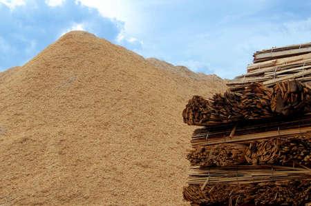 biomasa: Tablas de madera y virutas de madera para la combusti�n de una caldera de biomasa