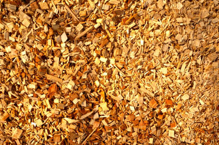 biomasa: Detalles de chips de biomasa de madera picada