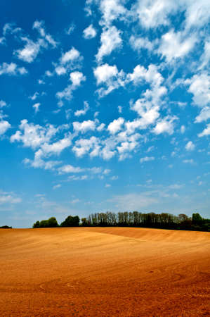 noone: Empty red agriculture field with a blue sky and white clouds