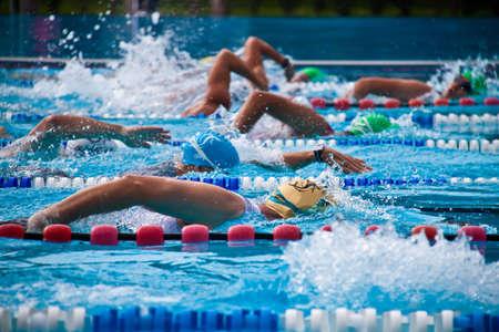 piscina olimpica: Orugas durante una competici�n en una piscina