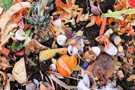 basura organica: Las verduras y huevos en un refugio de compost Foto de archivo