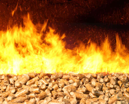 Combustion of biomass pellets with bright fire and flames photo