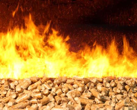 biomasa: La combustión de pellets de biomasa con el fuego y las llamas brillantes
