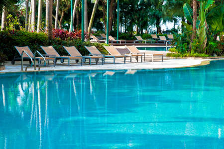 Swimming pool, deck chairs and palms
