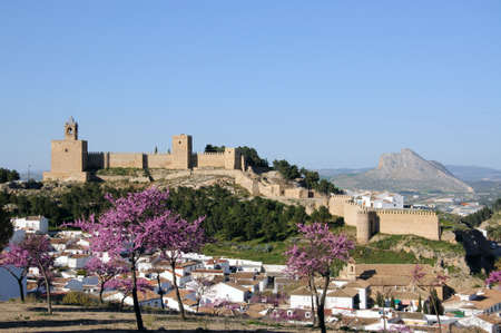 Castle fortress with pink blossom and townhouses in the foreground, Antequera, Malaga Province, Andalucia, Spain, Western Europe