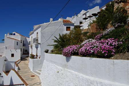 Typical street in a whitewashed village, Frigiliana, Malaga Province, Andalucia, Spain, Western Europe