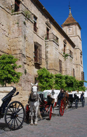 Episcopal Palace with horses and carriages in the foreground, Cordoba, Cordoba Province, Andalucia, Spain, Western Europe  photo