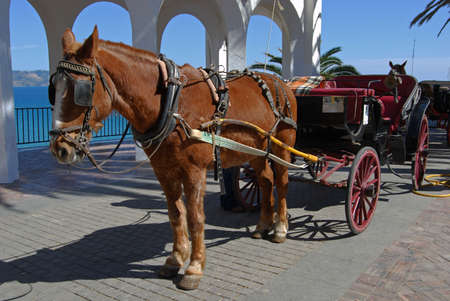 sol: Horse drawn carriage along the Balcony of Europe  Balcon de Europa , Nerja, Costa del Sol, Malaga Province, Andalucia, Spain, Western Europe  Stock Photo