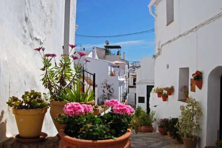 Village street with potted plants in the foreground, Frigiliana, Malaga Province, Andalucia, Spain, Western Europe  Stock Photo