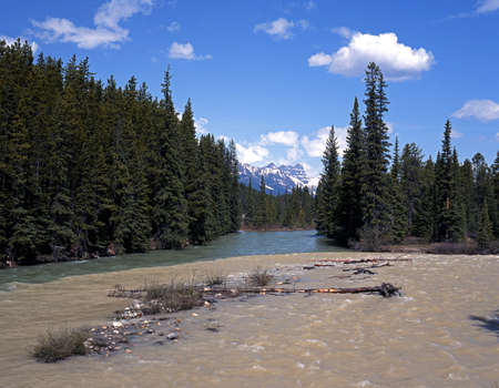 Bow River near Lake Louise, Banff National Park, Alberta, Canada  Stock Photo - 13814561
