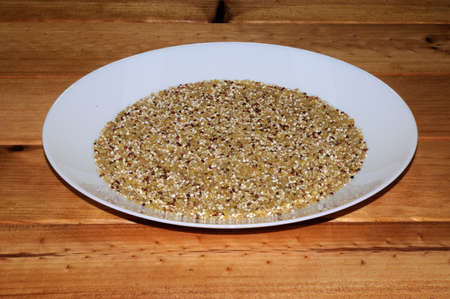insoluble: Dried red and white Quinoa seeds mixed with Bulgar wheat on a white plate