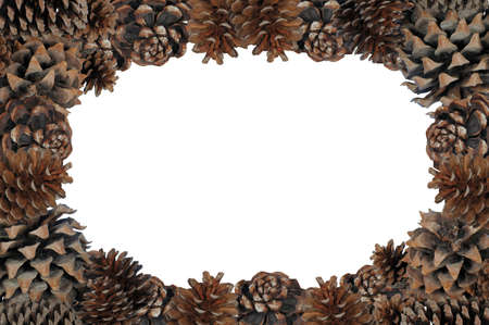Natural pinecone page border with white centre copy space Stock Photo - 16217982