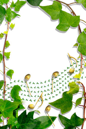 christmas ivy: Ivy border with a holly musical stave and golden notes against a white background