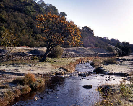 Stream with frost on banks, Near Woodall, Wensleydale, Yorkshire Dales, England, Western Europe