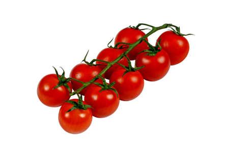 Cherry tomaten op de wijnstok tegen een witte achtergrond