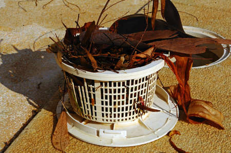 Pool skimmer leaf basket full, Costa del Sol, Andalucia, Spain, Western Europe  Banque d'images