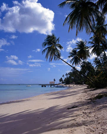 Pigeon Point beach, Tobago, Trinidad and Tobago, Caribbean, West Indies photo