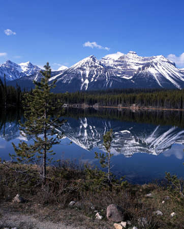 snow capped: Herbert Lake, Banff National Park, Alberta, Canada Stock Photo