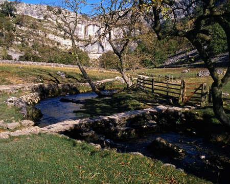 beck: Malham Beck and Clapper Bridge, Malham, Yorkshire Dales, North Yorkshire, England, UK, Great Britain, Western Europe