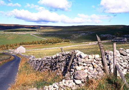 walling: Country lane edged with dry stone walling, Yorkshire Dales, North Yorkshire, England, UK, Great Britain, Western Europe  Stock Photo