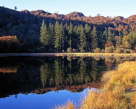Reflections in small lake, Near Hawkeshead, Lake District, Cumbria, England, UK, Western Europe  Stock Photo - 21788714
