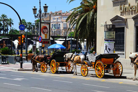 Malaga, Spain - June 14, 2011 - Horse drawn carriages near Cathedral, Molina Lario, Malaga, Costa del Sol, Malaga Province, Andalucia, Spain, Western Europe
