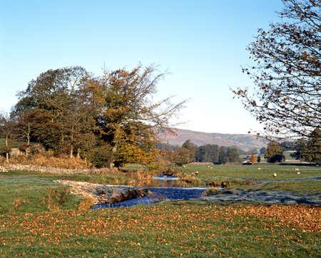 Brook running through fields and farmland in Eshton, Yorkshire Dales, North Yorkshire, England