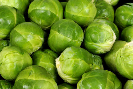 cleaned: Freshly cleaned Brussels sprouts