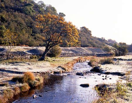 wensleydale: Arroyo que atraviesa Wensleydale en Inglaterra