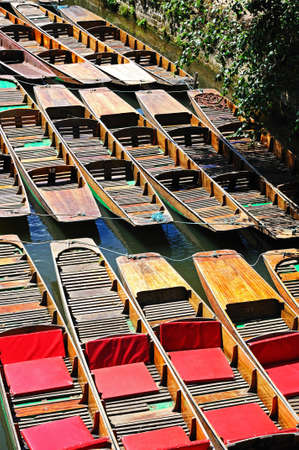 punt: Punts moored along the river Cherwell, Oxford, Oxfordshire, England, UK, Western Europe