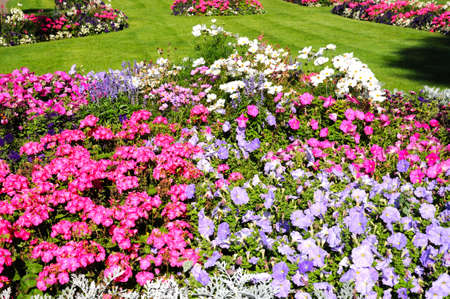 worcestershire: Pretty flowerbeds in Abbey Gardens, Evesham, Worcestershire, England, UK, Western Europe. Stock Photo