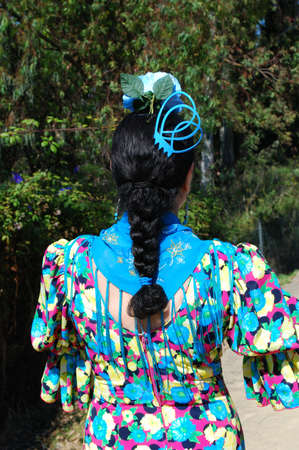 plaited: Spanish woman wearing a flamenco dress showing her plaited hair with accesories during the Romeria San Bernabe, Marbella, Costa del Sol, Malaga Province, Andalusia, Spain, Western Europe.