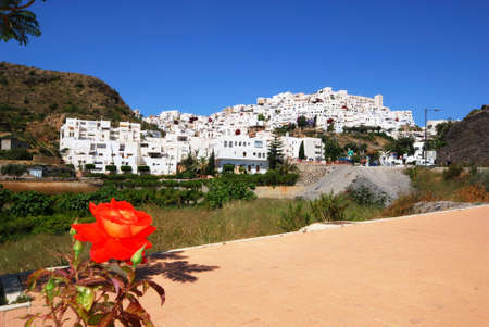 pueblo: View of the white town with a rose in the foreground, Mojacar Pueblo, Almeria Province, Andalusia, Spain, Western Europe. Editorial