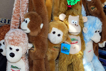 barbary ape: Souvenir Barbary Apes for sale in a shop along Main Street, Gibraltar, United Kingdom, Western Europe.