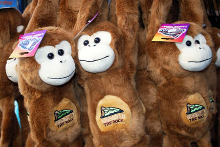 western europe: Souvenir Barbary Apes for sale in a shop along Main Street, Gibraltar, United Kingdom, Western Europe.