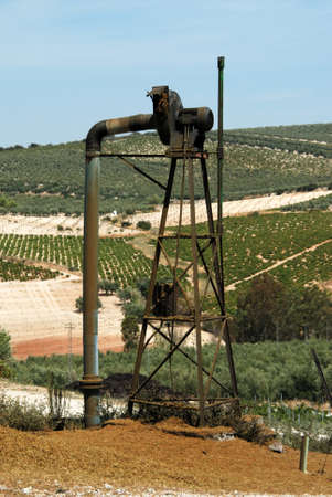 viniculture: Old grape pressing machinery with grapevines to the rear, Montilla, Cordoba Province, Andalusia, Spain, Western Europe.
