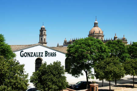 View over the Gonzalez Byass Bodegas towards the Cathedral, Jerez de la Frontera, Cadiz Province, Andalusia, Spain, Western Europe.