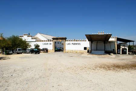 cooperativa: Uva de prensado de (Cooperativa), Montilla, Provincia de C�rdoba, Andaluc�a, Espa�a, Europa Occidental.
